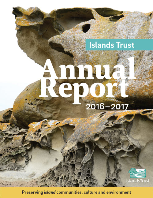 2017 annual report cover