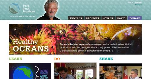 DSF website