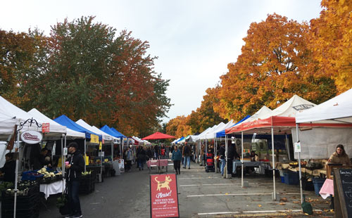 Trout Lake farmers market in the autumn