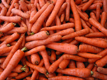 Local-grown nantes carrots