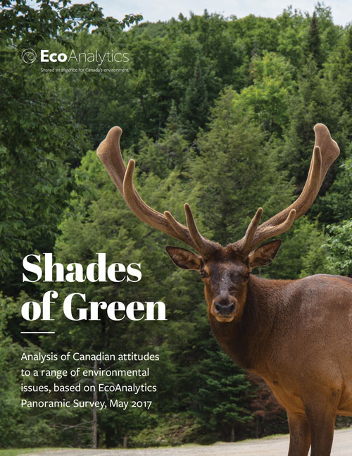 Cover for Shades of Green report