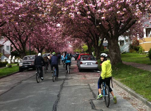 Bike the Blossoms riders (2014)