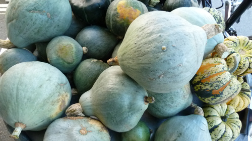 blue squashes