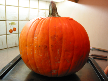 Pumpkin/Lantern